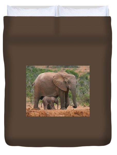 Mother And Calf Duvet Cover by Bruce J Robinson