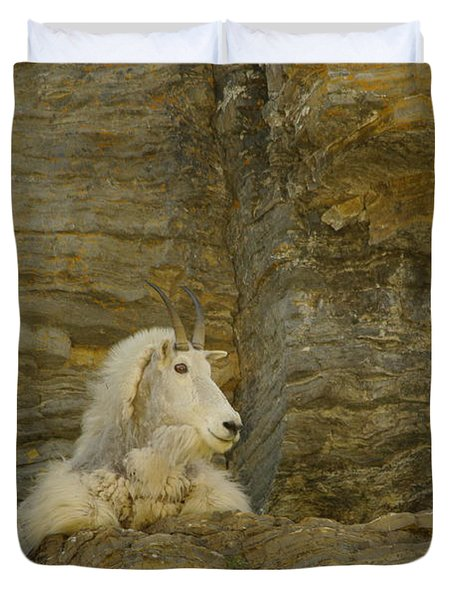 Mountain Goat Duvet Cover by Jeff Swan