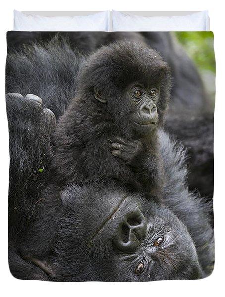 Mountain Gorilla Baby Playing Duvet Cover by Suzi  Eszterhas