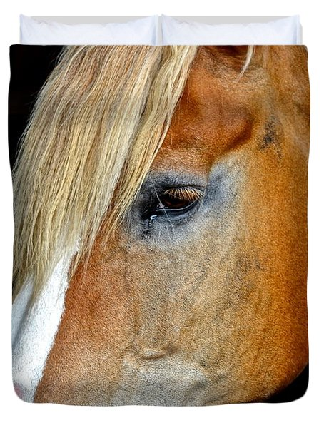 Mr Ed Duvet Cover by Frozen in Time Fine Art Photography