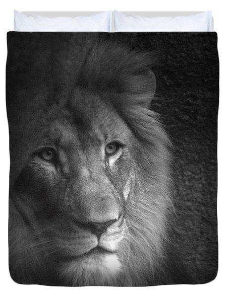 Mr Lion In Black And White Duvet Cover by Thomas Woolworth