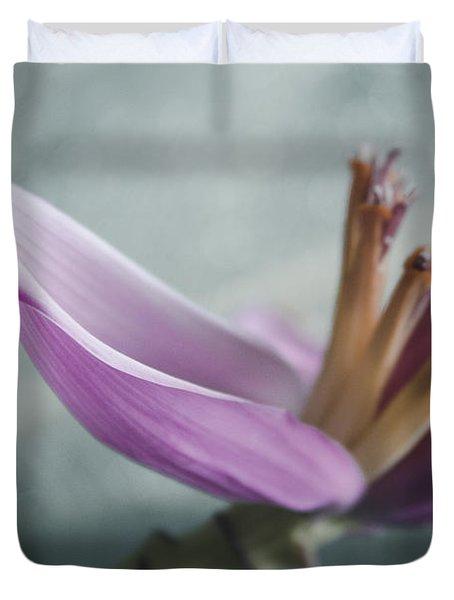 Musa Ornata - Pink Ornamental Banana Flower - Kepaniwai Maui Hawaii  Duvet Cover by Sharon Mau