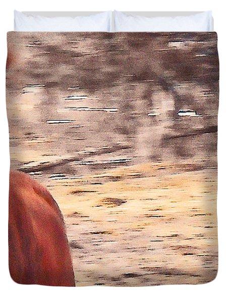 My Fine Friend The Flashy Chestnut Stallion Duvet Cover by Patricia Keller