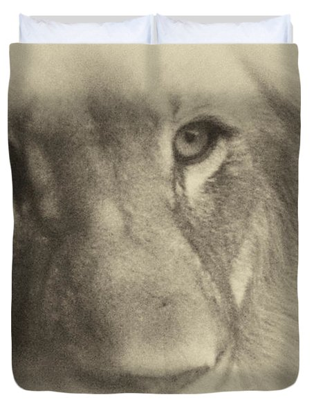 My Lion Eyes In Antique Duvet Cover by Thomas Woolworth