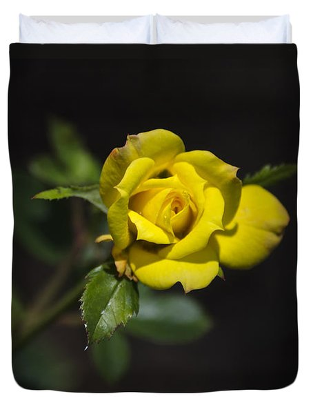 Mystic Yellow Rose Duvet Cover by Christina Rollo
