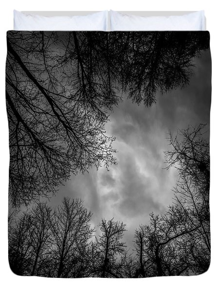 Naked Branches Duvet Cover by Bob Orsillo