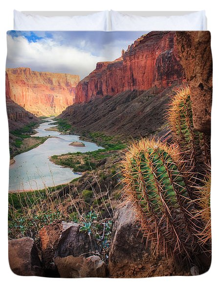 Nankoweap Cactus Duvet Cover by Inge Johnsson
