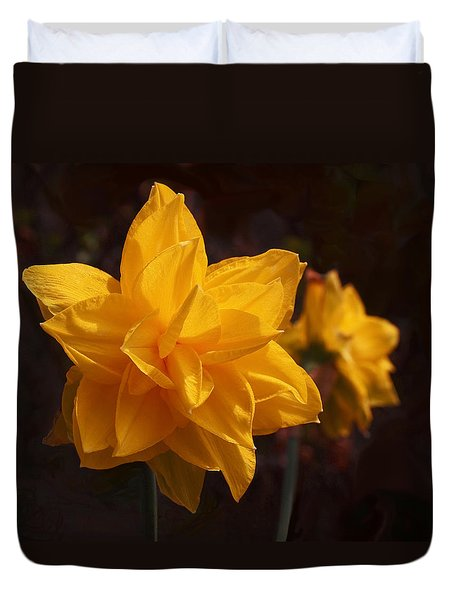 Narcissus Sweet Sue In Full Bloom Duvet Cover by Rona Black