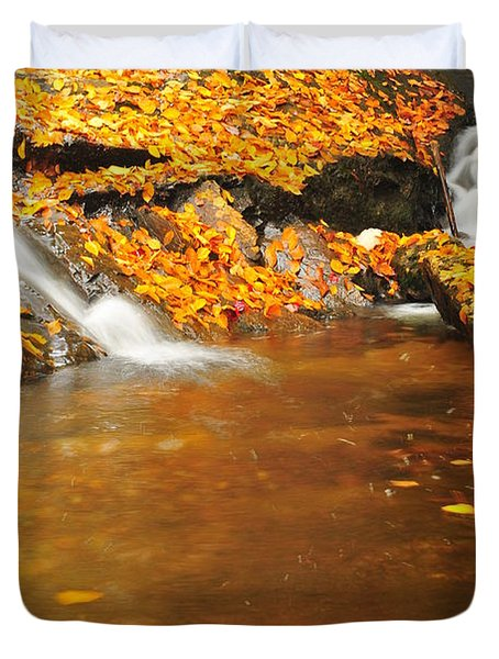 New Hampshire Stream Duvet Cover by Catherine Reusch  Daley