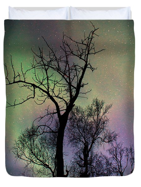 Northern Lights Cottonwood Duvet Cover by Ron Day
