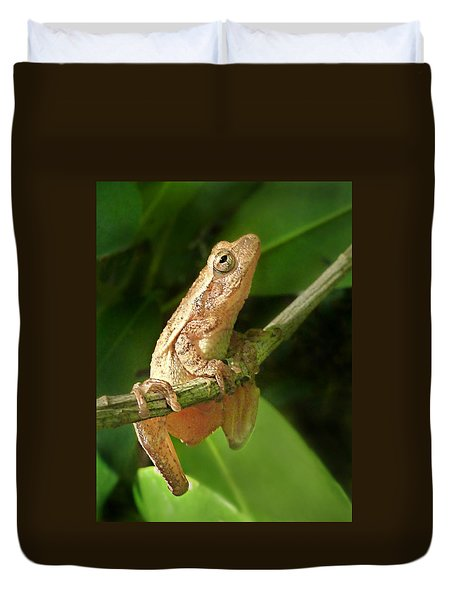 Northern Spring Peeper Duvet Cover by William Tanneberger