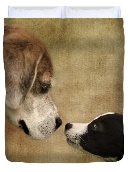 Nose To Nose Dogs Duvet Cover by Linsey Williams