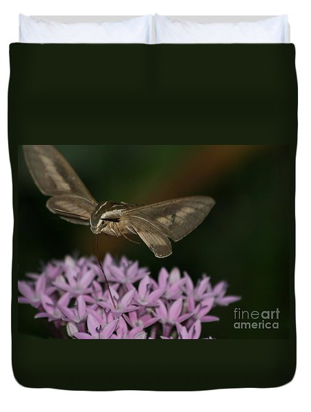 Not A Hummer Duvet Cover by Marty Fancy