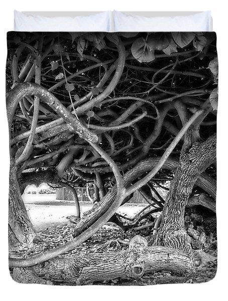 OAHU GROUND VINES - HAWAII Duvet Cover by Daniel Hagerman