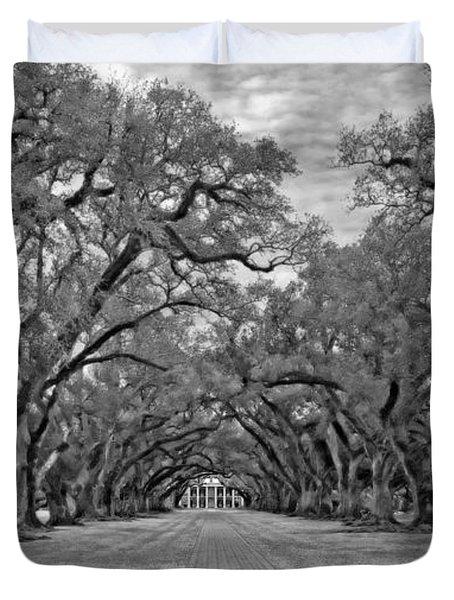 Oak Alley 3 monochrome Duvet Cover by Steve Harrington