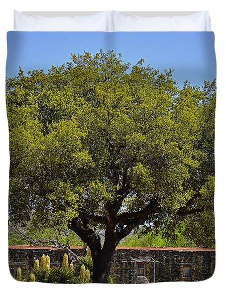 Oak Tree Mission San Jose Tx Duvet Cover by Christine Till