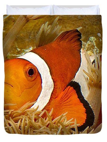 Ocellaris Clown Fish No 1 Duvet Cover by Jerry Fornarotto