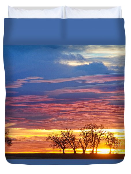 Oh What A Beautiful Morning Duvet Cover by James BO  Insogna