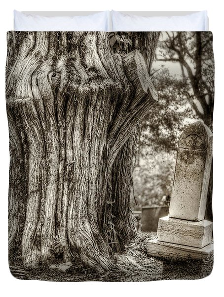 Old Friends Duvet Cover by Scott Norris
