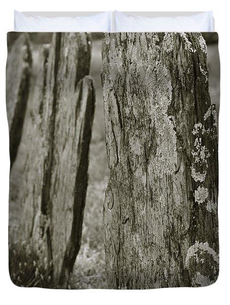 Old Gravestones I Duvet Cover by David Gordon
