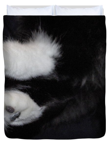 On Little Cat Feet Duvet Cover by Marilyn Wilson