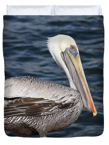 On The Edge - Brown Pelican Duvet Cover by Kim Hojnacki