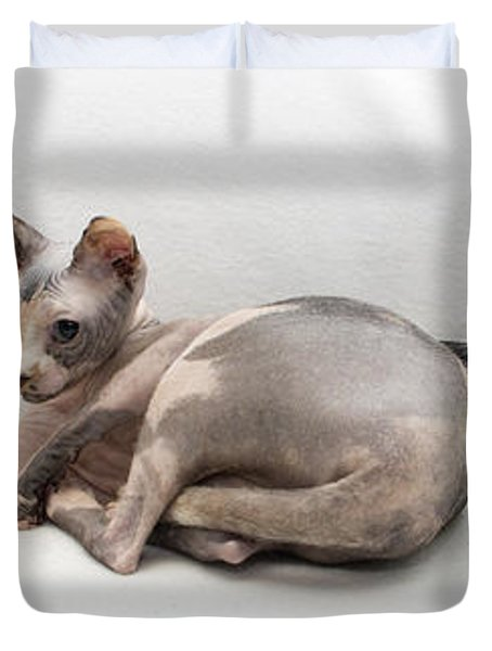 One Of These Is Not Like The Others Duvet Cover by Jeannette Hunt