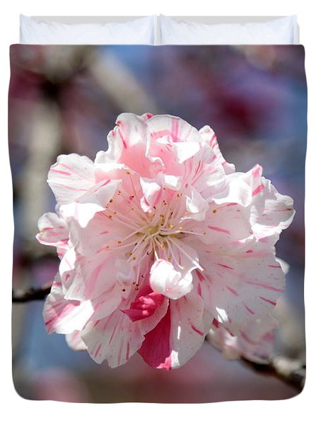 One Pink Blossom Duvet Cover by Carol Groenen