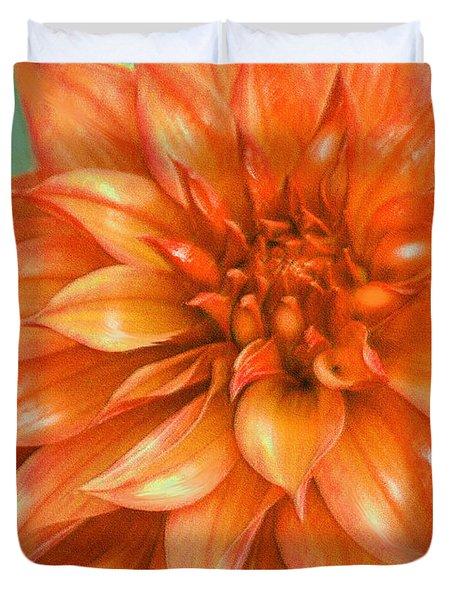 Orange Dahlia Digital Art By Jane Schnetlage