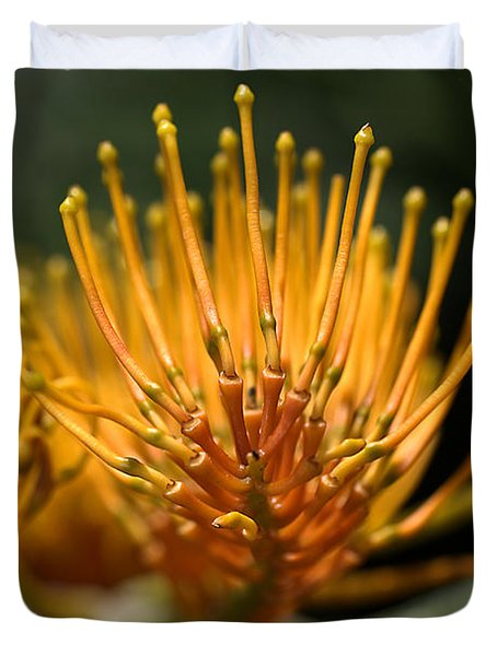 Orange Grevillea Duvet Cover by Joy Watson