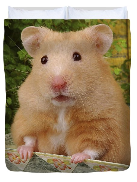 Orange Hamster Ha106 Duvet Cover by Greg Cuddiford