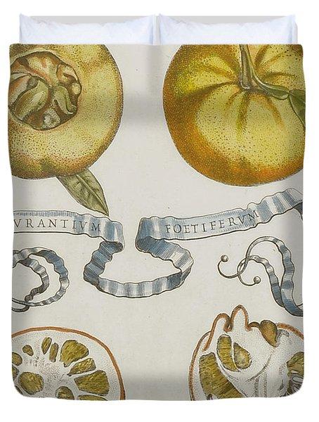 Oranges Duvet Cover by Cornelis Bloemaert