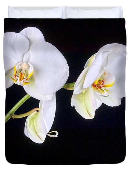 Orchid 2a Duvet Cover by Mauro Celotti