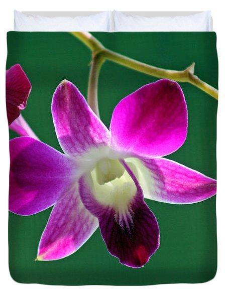 Orchid Flower Duvet Cover by Karen Adams