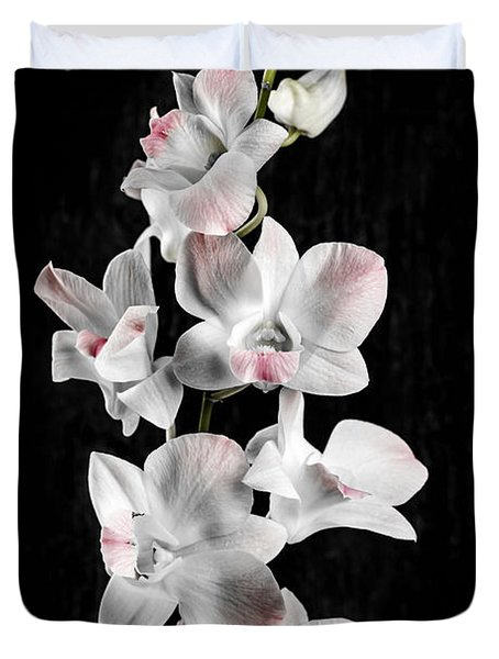 Orchid Flowers On Black Duvet Cover by Elena Elisseeva