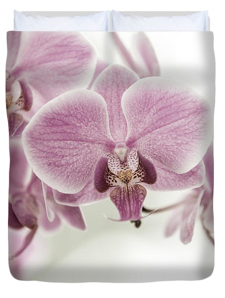 Orchid Pink Vintage Duvet Cover by Hannes Cmarits