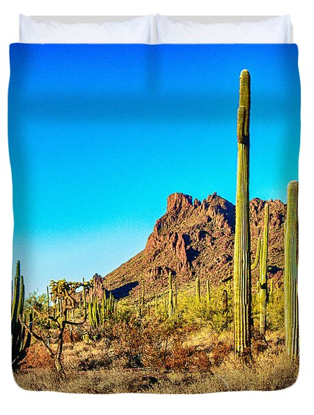 Organ Pipe Cactus National Monument Late Afternoon Duvet Cover by Bob and Nadine Johnston