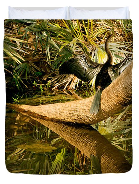 Oriental Darter Anhinga Melanogaster Duvet Cover by Panoramic Images