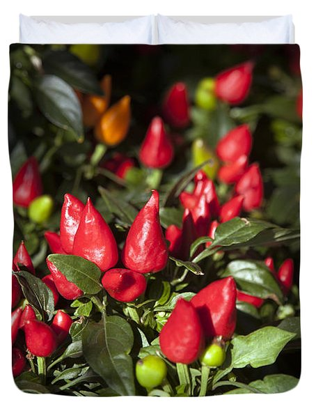 Ornamental Peppers Duvet Cover by Peter French