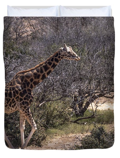 Out Of Africa Giraffe Duvet Cover by Janice Rae Pariza