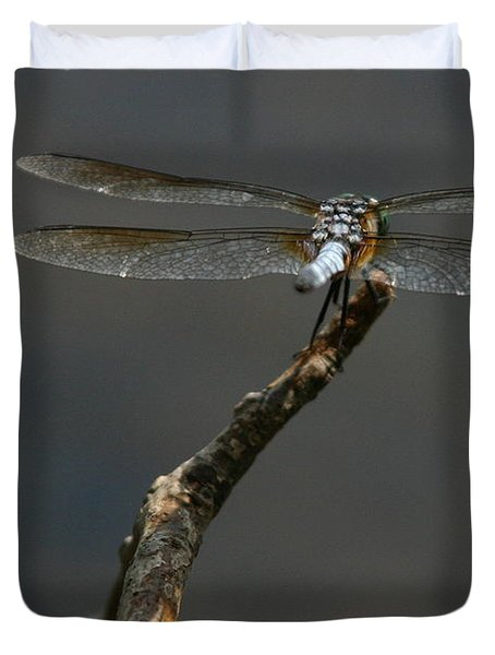 Out On A Limb Duvet Cover by Karol Livote