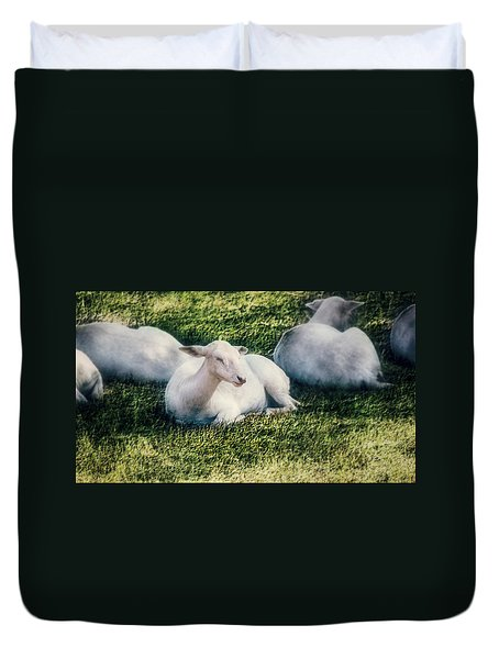 Out To Pasture Duvet Cover by Melanie Lankford Photography