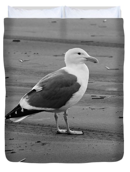Pacific Seagull In Black And White Duvet Cover by Jeanette C Landstrom