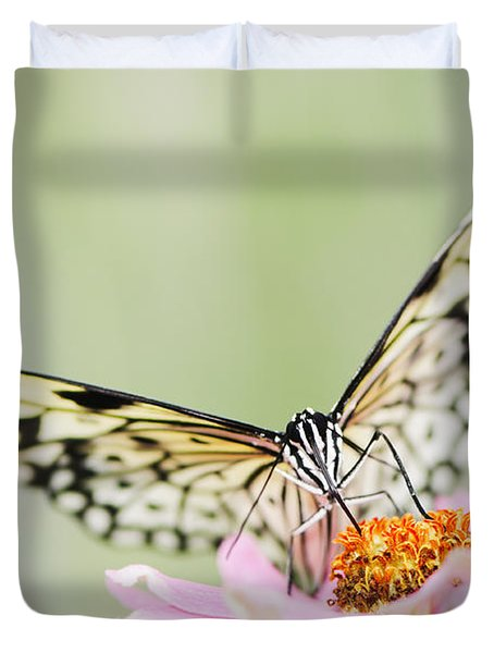 Paper Kite Butterfly On Zinnia Duvet Cover by Oscar Gutierrez