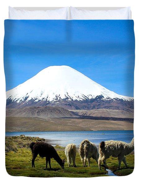 Parinacota Volcano Lake Chungara Chile Duvet Cover by Kurt Van Wagner