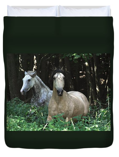 Paso Fino Mares Pay Attention Duvet Cover by Patricia Keller