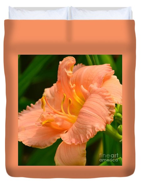 Peach Day Lilly Duvet Cover by Kathleen Struckle