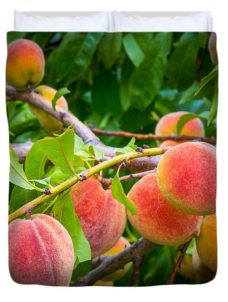 Peaches Duvet Cover by Inge Johnsson