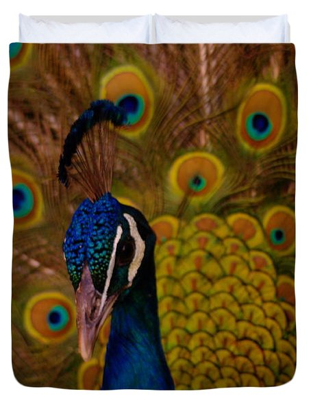 Peacock Duvet Cover by Jeff Swan