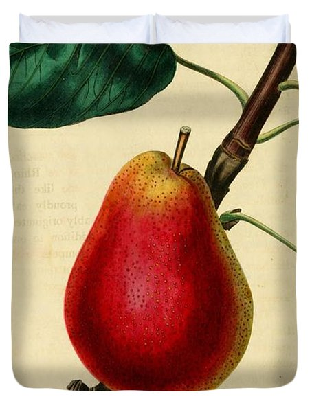 Pear 1829 Duvet Cover by Philip Ralley